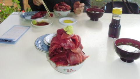 浅虫温泉鶴亀食堂マグロ丼