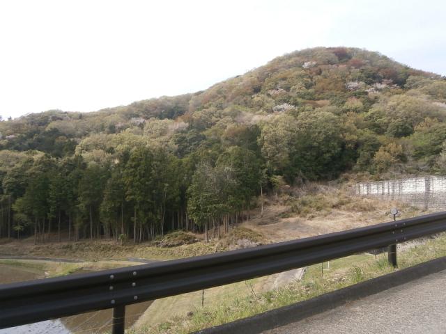 桜川市方面ツーリング