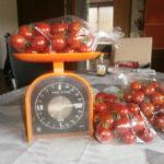 直売所のミニトマト|リコピンで健康美肌